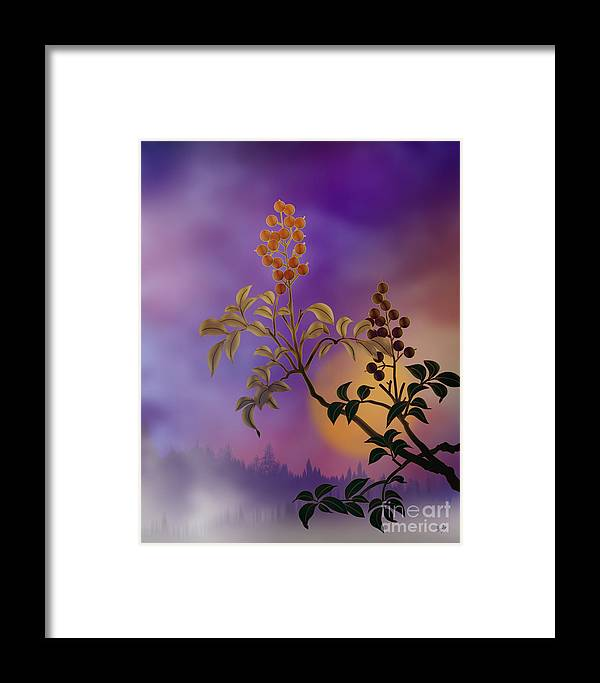Nature Framed Print featuring the digital art Nandina The Beautiful by Peter Awax