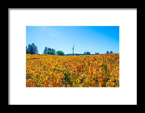 Napa Framed Print featuring the photograph Napa Wine Capital by Brian Williamson