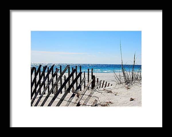 Seashore Framed Print featuring the photograph National Seashore by Nancy Wolfe