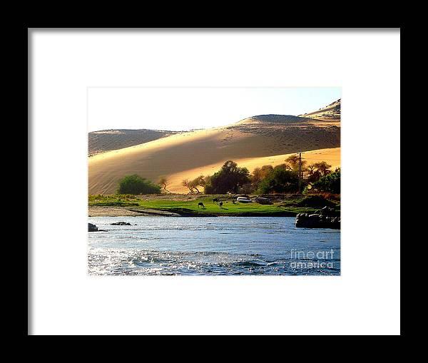 Natura Framed Print featuring the photograph Natura E Deserto by Adriana Otetea