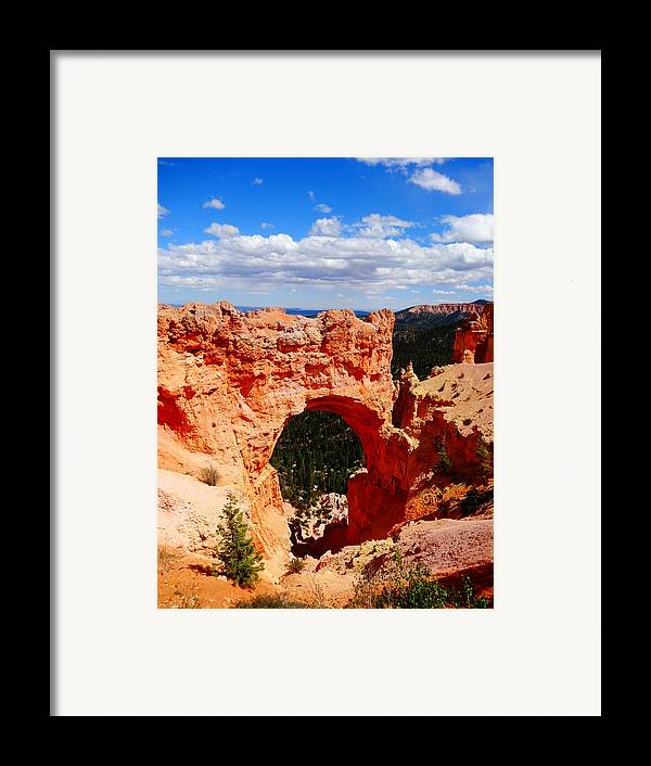 Natural Bridge In Bryce Canyon National Park Framed Print featuring the photograph Natural Bridge In Bryce Canyon National Park by Dan Sproul