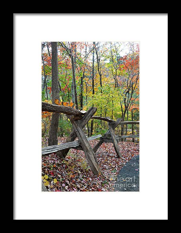 Wood Framed Print featuring the photograph Natural Wood by Casey Sims