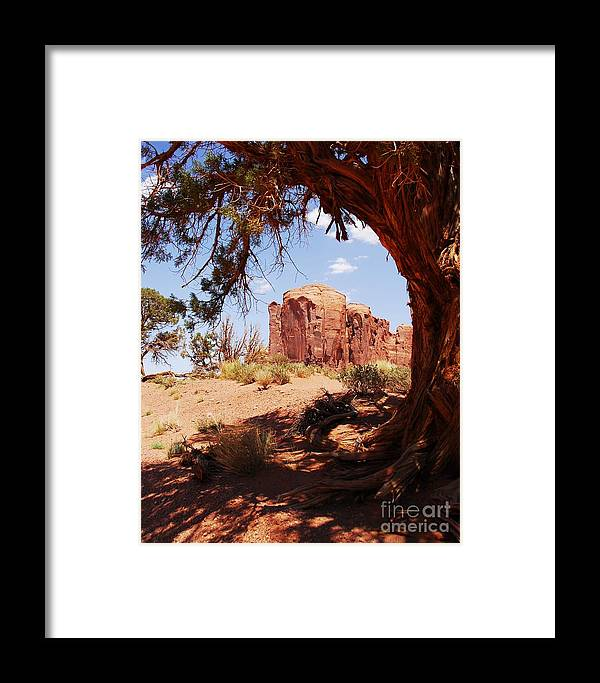 Natural Wood Frame Framed Print featuring the photograph Natural Wood Frame by Mel Steinhauer