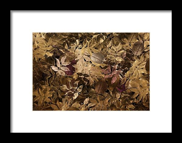 Abstract Framed Print featuring the digital art Naturaleaves - Gla02f by Variance Collections
