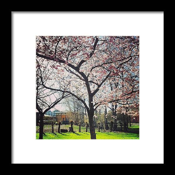 Beautiful Framed Print featuring the photograph #nature #tagsforlikes #sky #sun #summer by Abdelrahman Alawwad