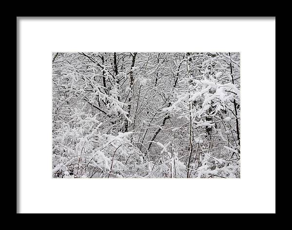 Winter Framed Print featuring the photograph Nature's Blanket by Carla P White