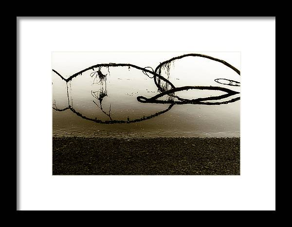 Branches Framed Print featuring the photograph Natures Edge by Nate Parks