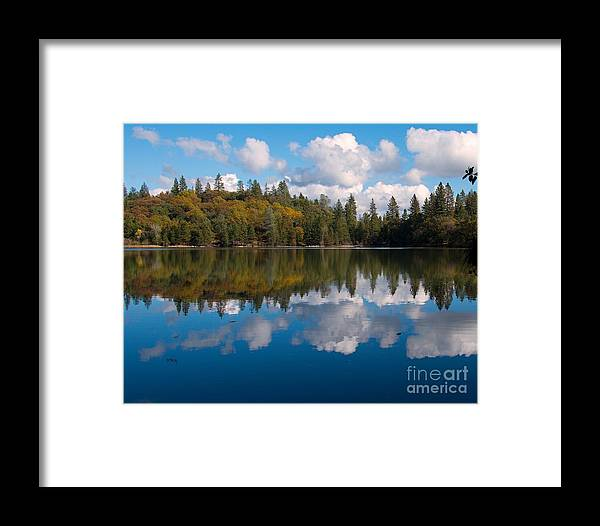 Breathtaking Tranquility Framed Print featuring the photograph Natures Mirror by Patrick Witz