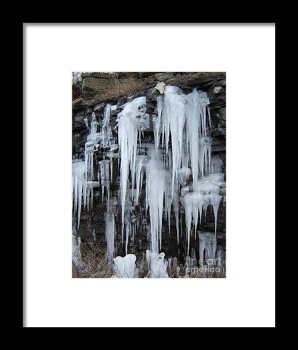 Icicles Framed Print featuring the photograph Nature's Popsicles by Margaret McDermott