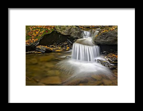 Water Framed Print featuring the photograph Natures Stream by Susan Candelario