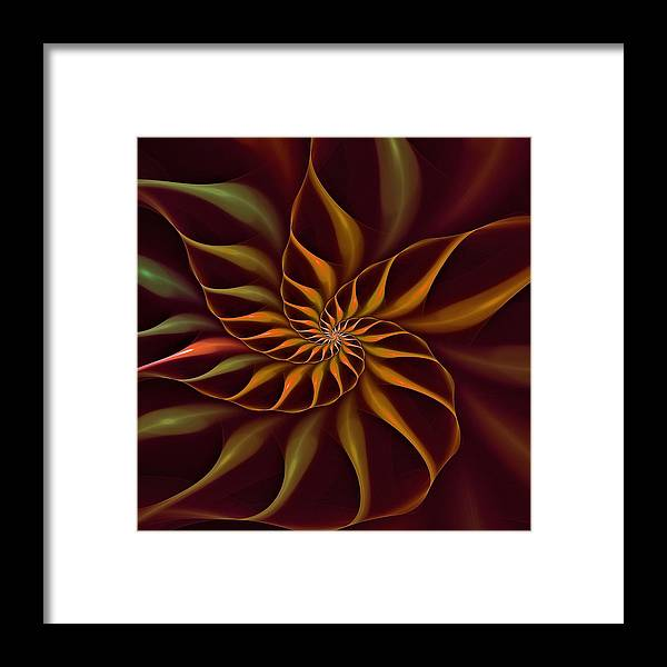 Flower Framed Print featuring the digital art Nautilus Fractalus Tropical by Doug Morgan
