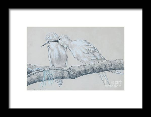 Birds Pairing Framed Print featuring the drawing Necking High Style by Blanch Paulin