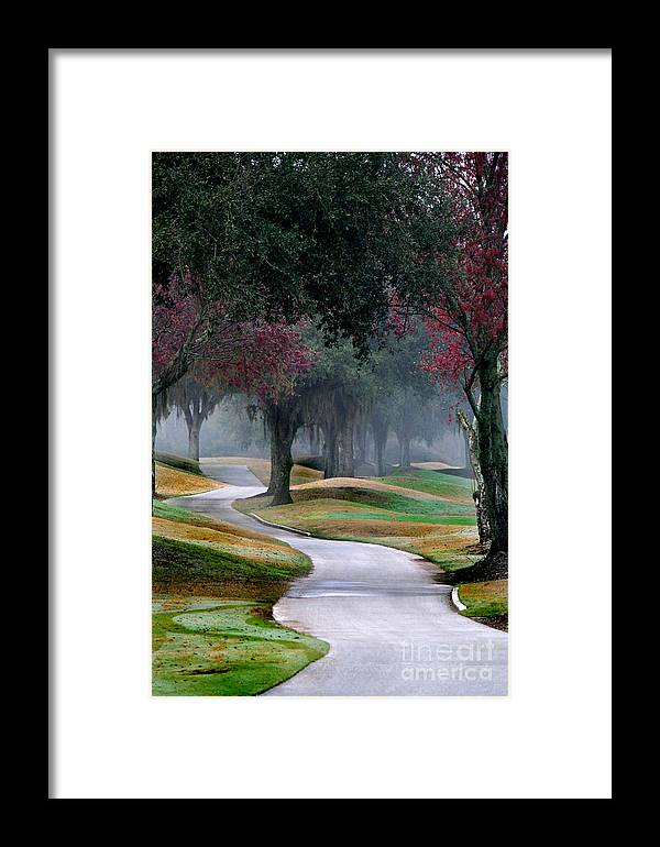 Path Framed Print featuring the photograph Never-ending Path by Monika A Leon