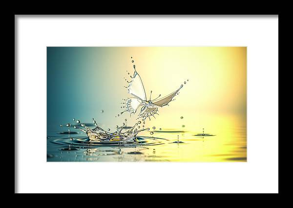 Spray Framed Print featuring the photograph New Life by Blackjack3d