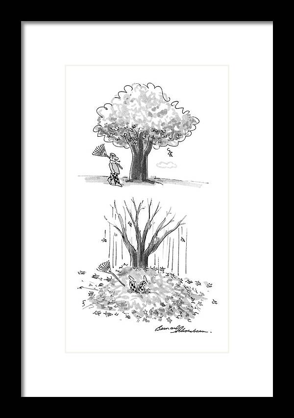 No Caption Two Panel Drawing. In The First A Man Is Walking By A Tree With A Rake In His Hand. In The Second All Of The Leaves Have Fallen Off Of The Tree Framed Print featuring the drawing New Yorker October 17th, 1988 by Bernard Schoenbaum