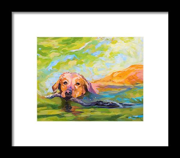 Dog Painting Framed Print featuring the painting Nice Day For A Swim by Janine Hoefler
