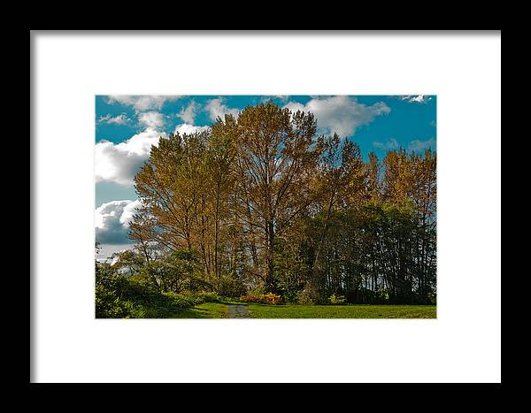 Mount Vernon Washington Framed Print featuring the photograph North Lions Park In Mount Vernon Washington by David Patterson
