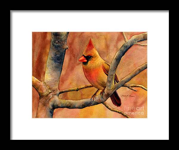 Cardinal Framed Print featuring the painting Northern Cardinal II by Hailey E Herrera