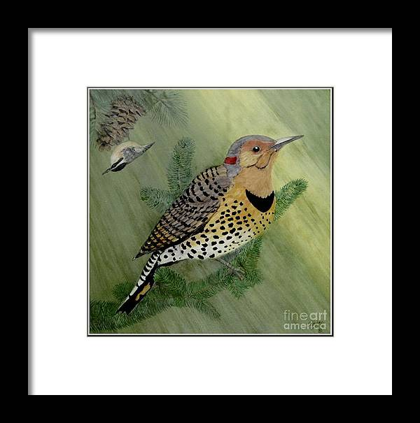 Northern Flicker Framed Print featuring the painting Northern Flicker And Red-breasted Nuthatch by Sandra Maddox