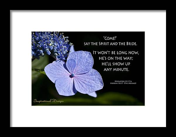 Hydrangea Framed Print featuring the photograph Not Long Now by Inspirational Designs