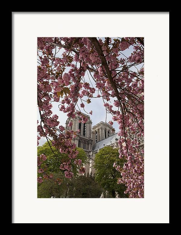 Paris Framed Print featuring the photograph Notre Dame 1 by Art Ferrier