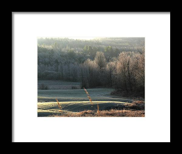 Morning Frost Framed Print featuring the photograph November Frost by Natalie LaRocque