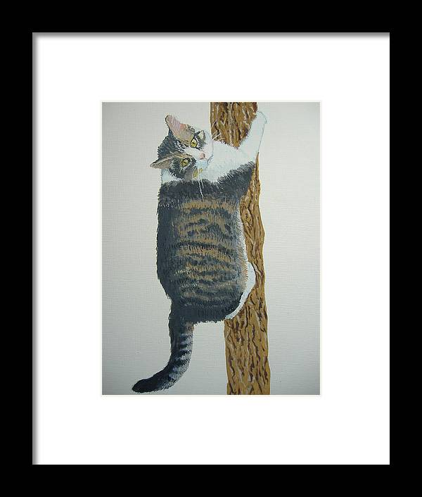 Cat Framed Print featuring the painting Now What??? by Norm Starks