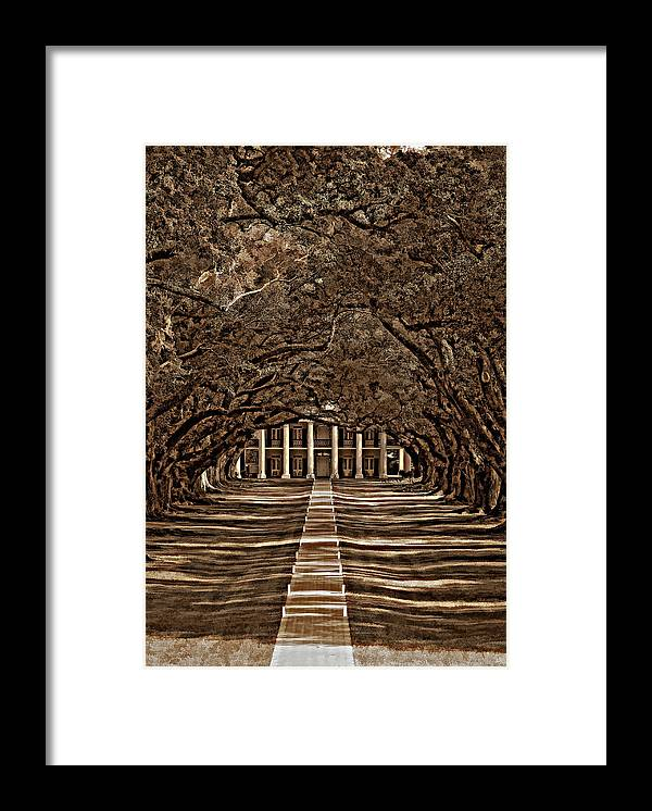 Oak Alley Plantation Framed Print featuring the photograph Oak Alley Bw by Steve Harrington