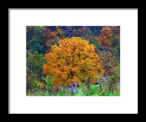 Autumn Framed Print featuring the digital art Oak In Autumn Color by George Ferrell