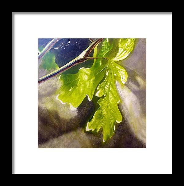 Leaves Framed Print featuring the painting Oak Leaves by John Norman Williams