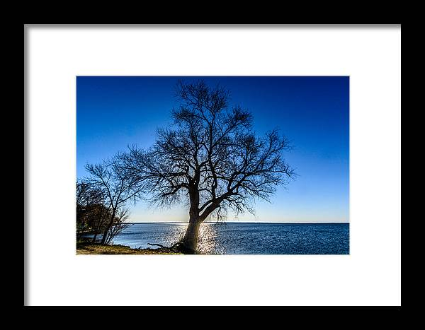 2014 Framed Print featuring the photograph Oak Sunrise by Randy Scherkenbach