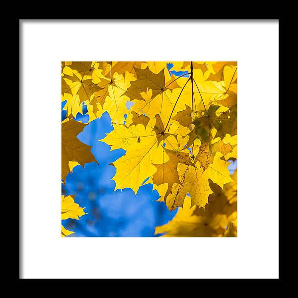 Abstract Framed Print featuring the photograph October Blues 8 - Square by Alexander Senin