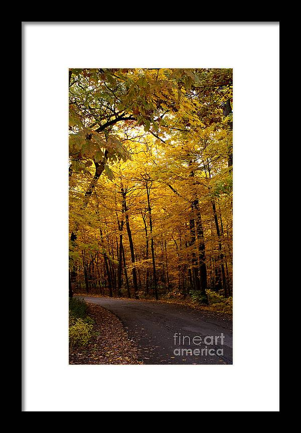 Leaves Framed Print featuring the photograph October Road by Valerie Fuqua