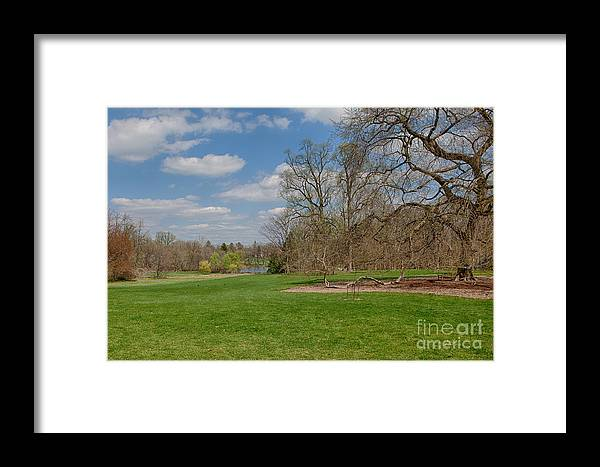 Elm Framed Print featuring the photograph Old Elm Haverford College by Kay Pickens