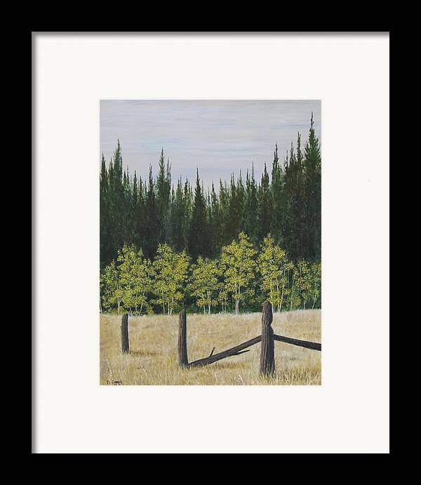 Landscape Framed Print featuring the painting Old Fences by Dana Carroll