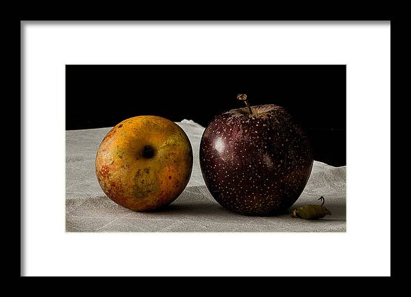 Apple Framed Print featuring the photograph Old Friends by Kate Ussailis