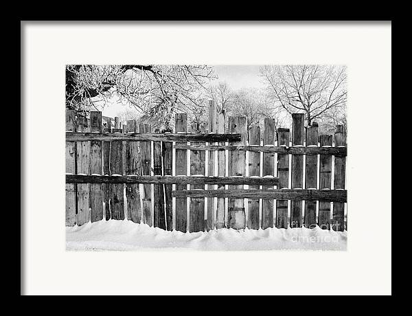 Old Framed Print featuring the photograph old patched up wooden fence using old bits of wood in snow Forget Saskatchewan Canada by Joe Fox