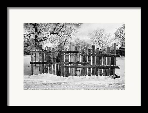 Old Framed Print featuring the photograph old patched up wooden fence using old bits of wood in snow Forget Saskatchewan by Joe Fox