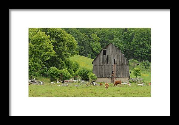 Landscape Framed Print featuring the photograph Old Quebec Barn by Marg Lamendeau