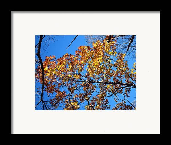 Old Framed Print featuring the photograph Old Rag Hiking Trail - 121218 by DC Photographer