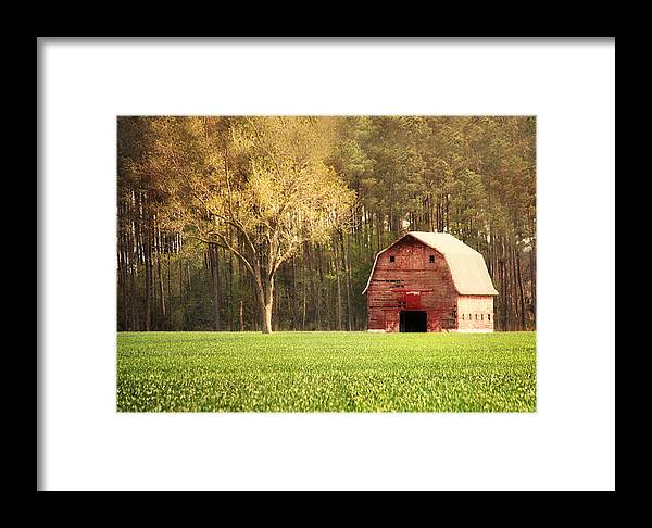 Barn Framed Print featuring the photograph Old Red Barn by Angie Colona