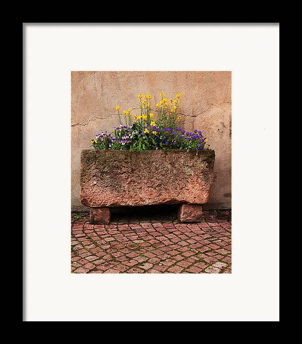 Flowers Framed Print featuring the photograph Old Stone Trough And Flowers In Alsace France by Greg Matchick