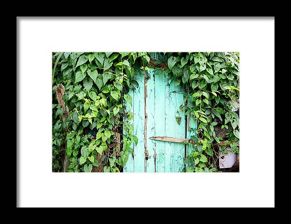 Outdoors Framed Print featuring the photograph Old Wooden Door by Real444