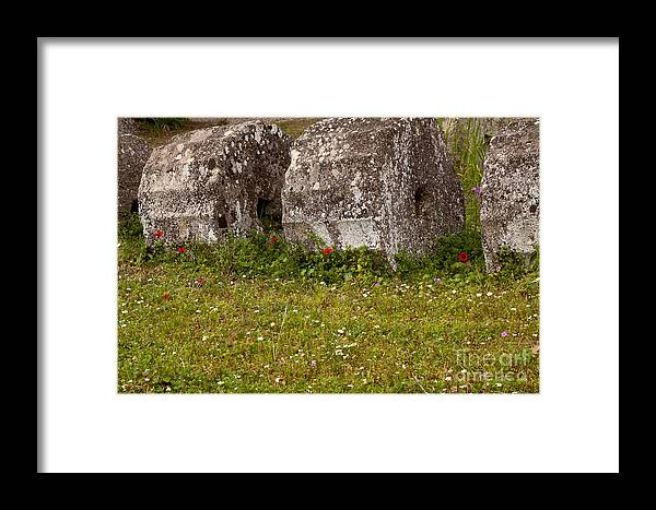 Ruins Framed Print featuring the photograph Olympia Ruins And Wild Flowers  #9821 by J L Woody Wooden