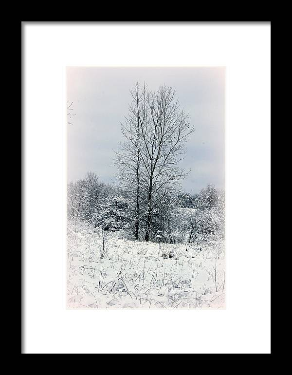 Winter Framed Print featuring the photograph On A Winters Day by Kay Novy
