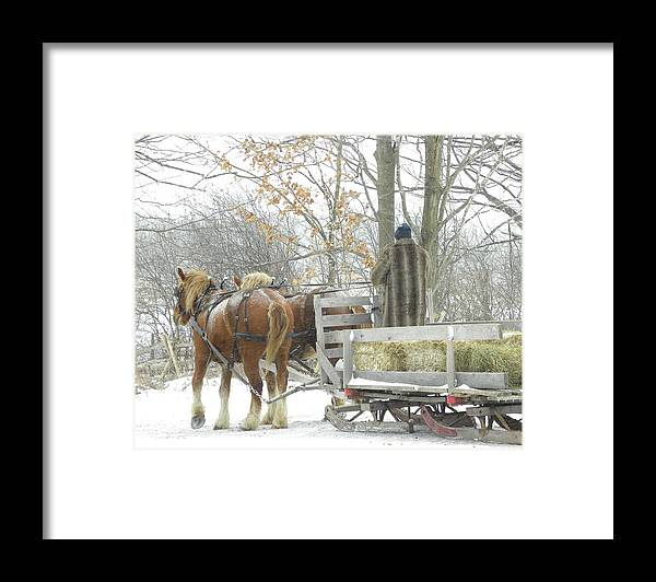 Horses Framed Print featuring the photograph On Our Way by Peggy McDonald