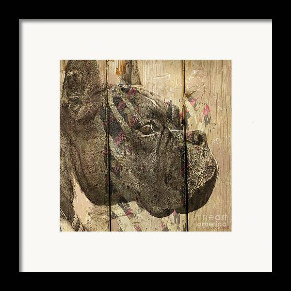 Boxer Dog Framed Print featuring the digital art On The Fence by Judy Wood