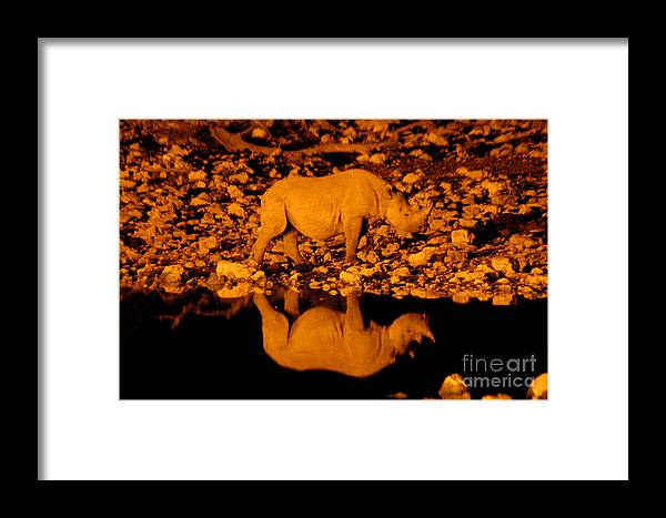 Rhino Framed Print featuring the photograph On The Move by Alison Kennedy-Benson
