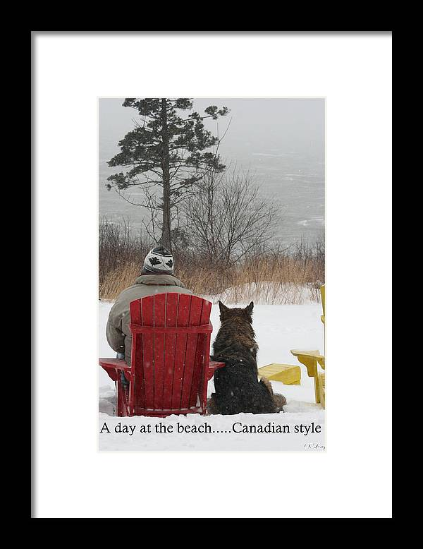 Funny Photograph Framed Print featuring the photograph Only In Canada by Sue Long