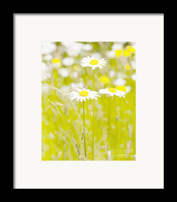 Daisy Framed Print featuring the painting Oopsy Daisy by Artist and Photographer Laura Wrede
